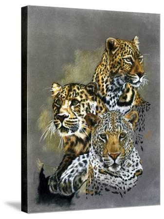 Shadow Hunter-Barbara Keith-Stretched Canvas Print