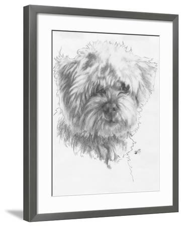 Maltipoo-Barbara Keith-Framed Giclee Print