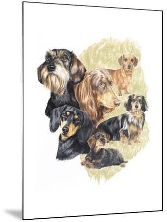 Dachshund-Barbara Keith-Mounted Giclee Print