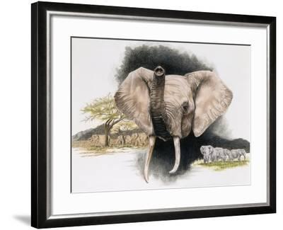 Imperiled-Barbara Keith-Framed Giclee Print