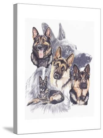 German Shepard-Barbara Keith-Stretched Canvas Print