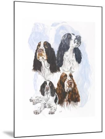 Springer Spaniel-Barbara Keith-Mounted Giclee Print