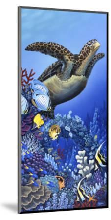 Flight of the Sea Turtle-Apollo-Mounted Giclee Print