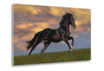 Fantasy Horses 40-Bob Langrish-Metal Print