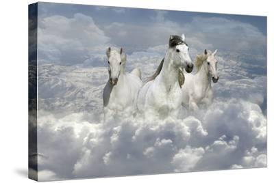 Fantasy Horses 41-Bob Langrish-Stretched Canvas Print