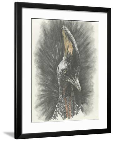 Marvelous, Simply Marvelous-Barbara Keith-Framed Giclee Print