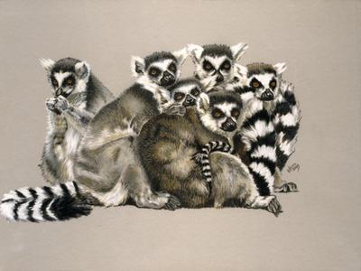 Odd Man Out-Barbara Keith-Framed Giclee Print
