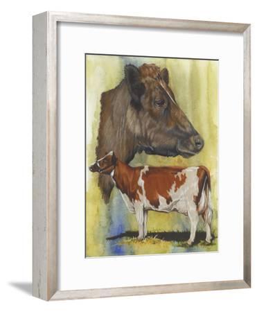 Ayrshire Cows-Barbara Keith-Framed Giclee Print