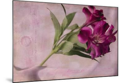 Forever Fuchsia-Bob Rouse-Mounted Giclee Print