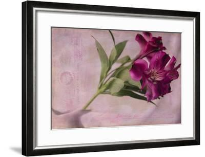 Forever Fuchsia-Bob Rouse-Framed Giclee Print