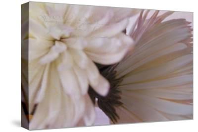 Fuji White-Bob Rouse-Stretched Canvas Print