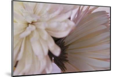 Fuji White-Bob Rouse-Mounted Giclee Print