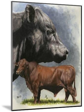 Angus Cattle-Barbara Keith-Mounted Giclee Print