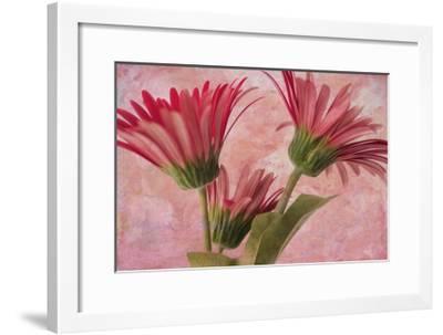 Gerber Trio-Bob Rouse-Framed Giclee Print