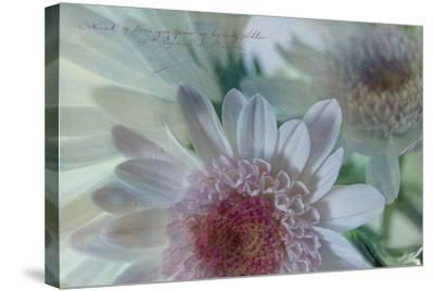 Mums and Fuji 3-Bob Rouse-Stretched Canvas Print