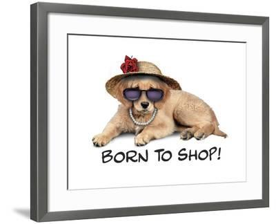 Shop Pup--Framed Giclee Print