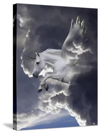 Unicorn 62-Bob Langrish-Stretched Canvas Print