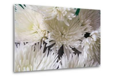 Blooming White-Bob Rouse-Metal Print