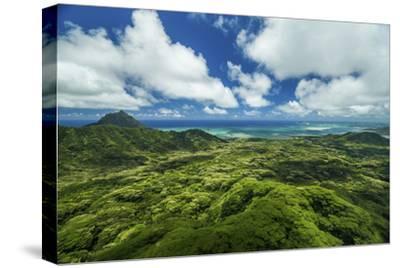 Kualoa Jungles-Cameron Brooks-Stretched Canvas Print