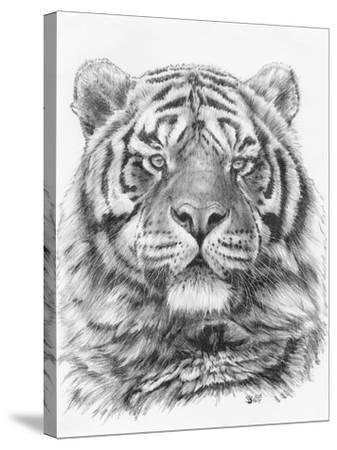 Venturer-Barbara Keith-Stretched Canvas Print