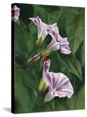 Morning-Barbara Keith-Stretched Canvas Print
