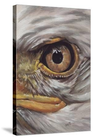 Eye-Catching Bald Eagle-Barbara Keith-Stretched Canvas Print