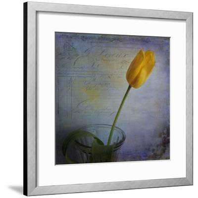 Tulip with Blue-Bob Rouse-Framed Giclee Print