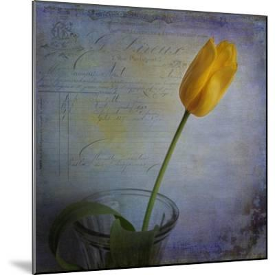 Tulip with Blue-Bob Rouse-Mounted Giclee Print