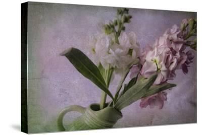 Pink and White Stock-Bob Rouse-Stretched Canvas Print