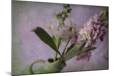 Pink and White Stock-Bob Rouse-Mounted Giclee Print