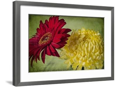 Red and Yellow-Bob Rouse-Framed Giclee Print