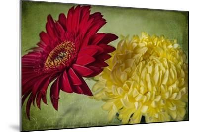 Red and Yellow-Bob Rouse-Mounted Giclee Print