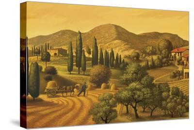 Tuscan Landscape-Dan Craig-Stretched Canvas Print