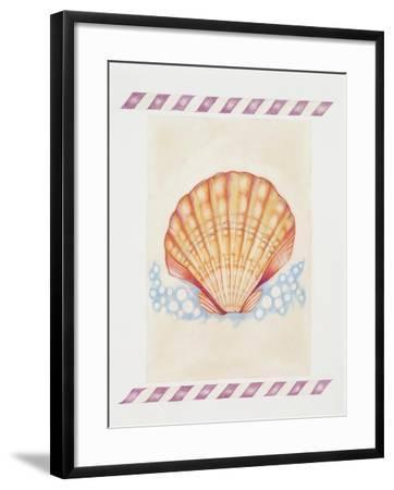 Shell Cardita-Deborah Kopka-Framed Giclee Print