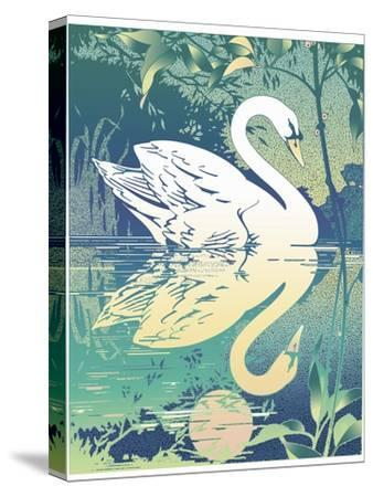 Swan-David Chestnutt-Stretched Canvas Print