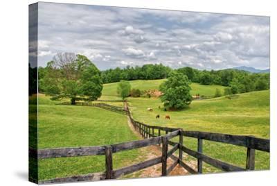 horse farm-Bob Rouse-Stretched Canvas Print