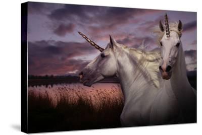 Unicorn 70-Bob Langrish-Stretched Canvas Print