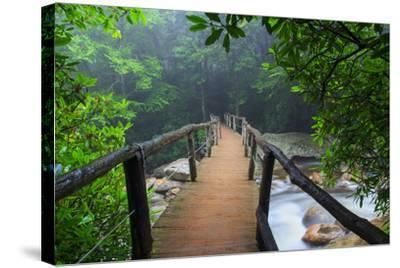 Wooden Bridge in Fog-Bob Rouse-Stretched Canvas Print