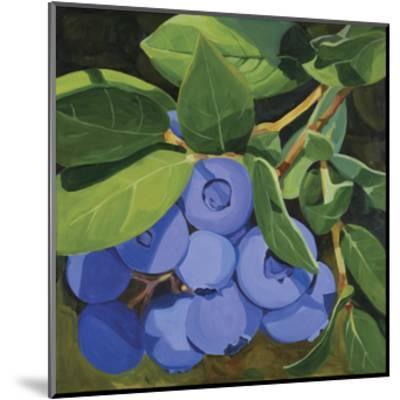 Blueberries-Catherine Breer-Mounted Giclee Print