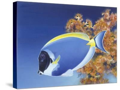 Powder Blue Tang-Durwood Coffey-Stretched Canvas Print