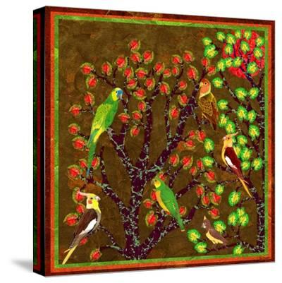 Bird Calls 21-David Sheskin-Stretched Canvas Print
