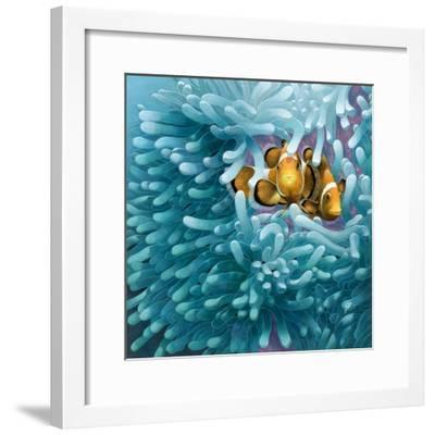 Clowns-Durwood Coffey-Framed Giclee Print