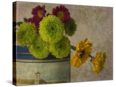 Poms 3-Bob Rouse-Stretched Canvas Print