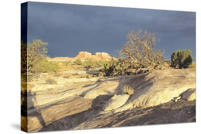 Canyonland 14-Gordon Semmens-Stretched Canvas Print