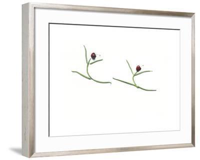 String Bean Cherrie Dancers-Donna Basile-Framed Giclee Print