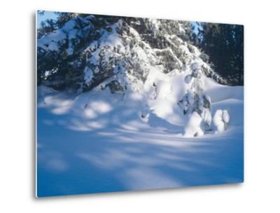 Buffalo River 53-Gordon Semmens-Metal Print