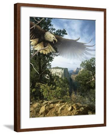 Above the Rim-Gordon Semmens-Framed Giclee Print