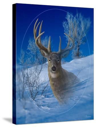 Winterland-Gordon Semmens-Stretched Canvas Print