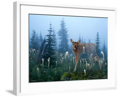 Fawn Memories-Gordon Semmens-Framed Giclee Print