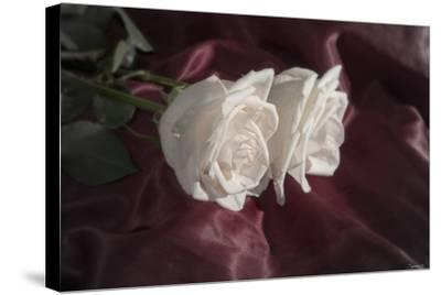 Rose-Gordon Semmens-Stretched Canvas Print